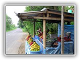 fruit_on_the_road1